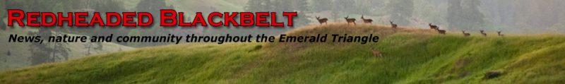 Redheaded Blackbelt