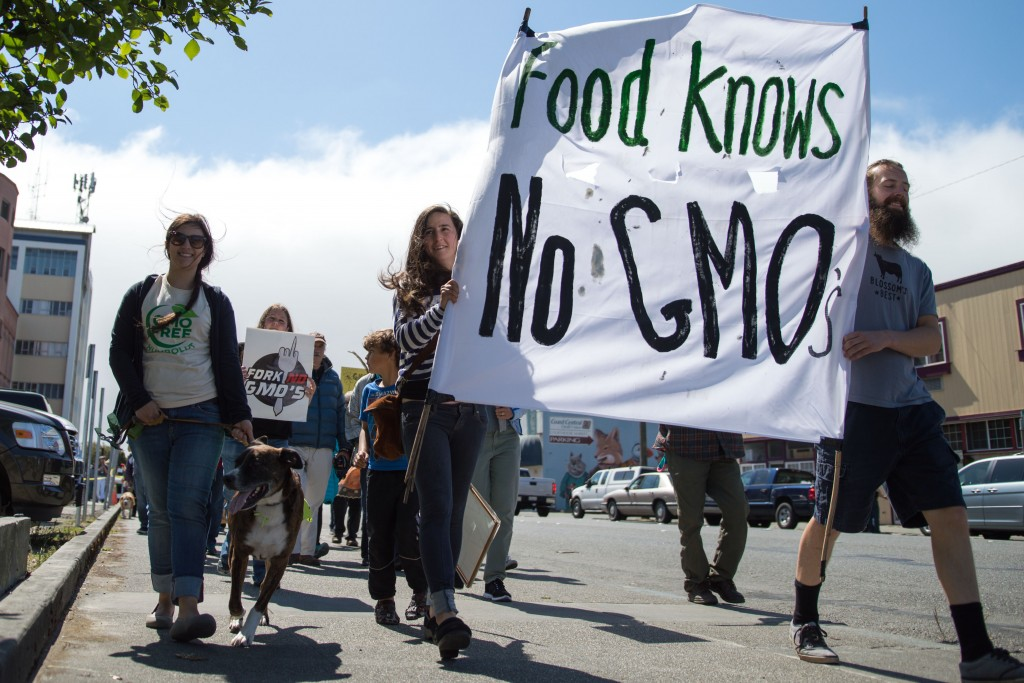 Anti-Monsanto marchers walk along the sidewalk along Fourth Street.