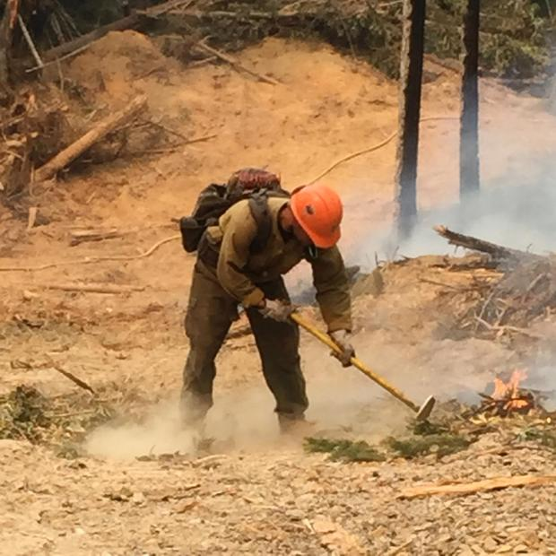 Firefighter keeping the firelines clear. [Photo from InciWeb]