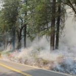 Backburning along Hwy 3 [Photo from InciWeb]