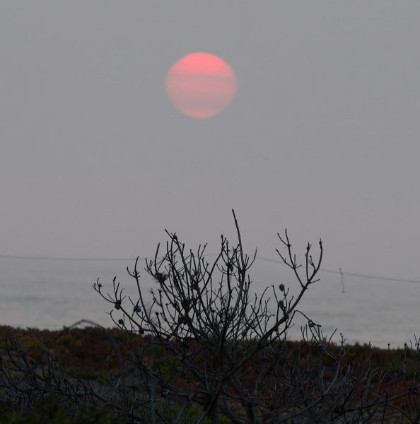 Smoke obscured last night's sunset near Fort Bragg as haze from the Lightning Fires covers much of the Emerald Counties.  [Photo by Lynn Harrington]
