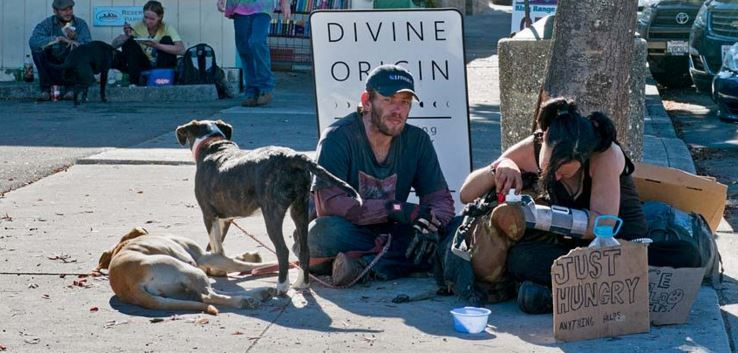 Divine Origin sign frames travelers from Oklahoma in 2015. Trimmigrants, marijuana