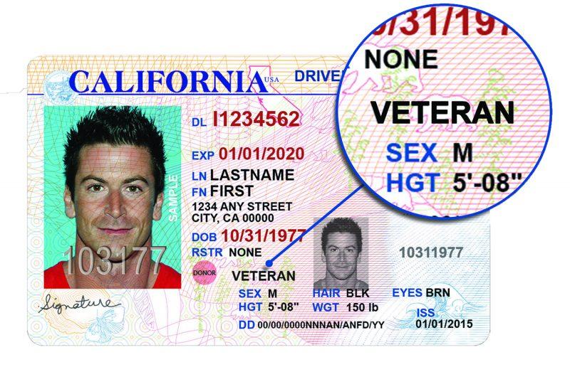 Veteran Drivers image (2)
