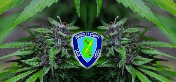 Humboldt County Drug task force