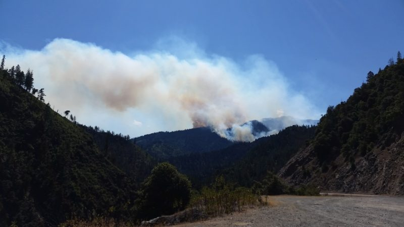 The Pony Fire: taken at 4pm, June 11, 2016 from Highway 96, approximately 1 mile north of Swillup Creek looking south. [Photo from the US Forest Service]