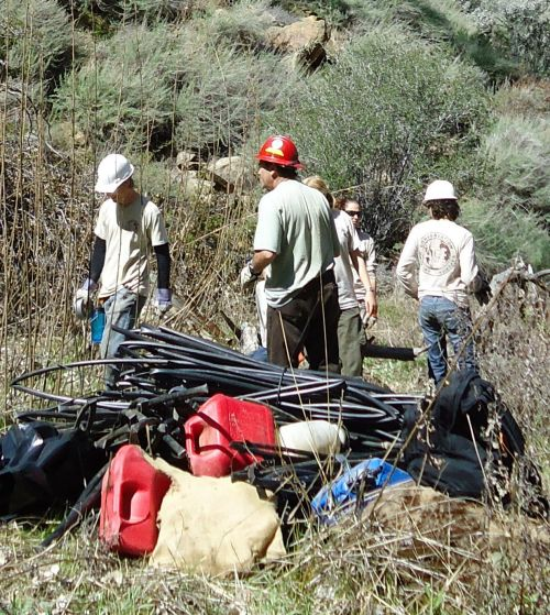 BLM employees remove trash from an illegal marijuana garden on public lands in California (photo by BLM Central Coast Field Office)