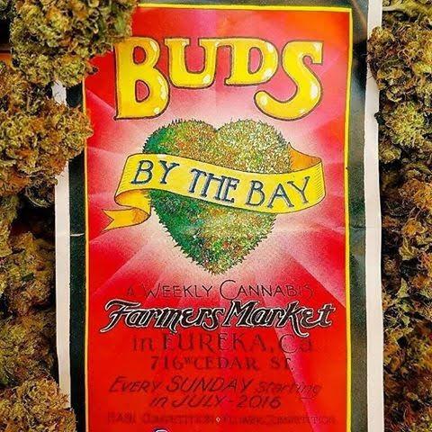 Eureka's First Cannabis Market