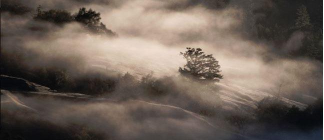 fog frost sun