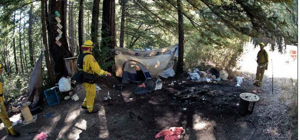 Fire in homeless encampment feature