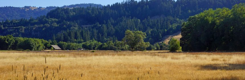 parkview Southern Humboldt Community Park