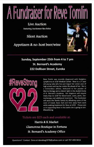 Reve fundraiser