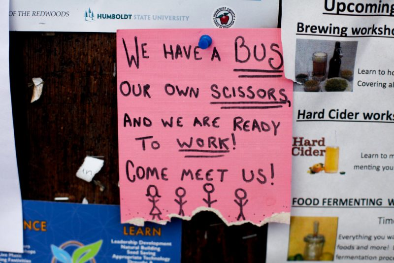 Ads for trimmers tacked up on a bulletin board in Garberville, Calif., on Sunday, October 18, 2015.