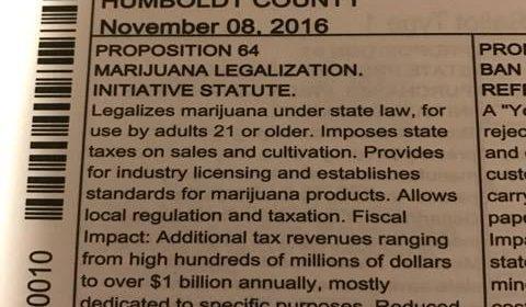 ballot marijuana legalization