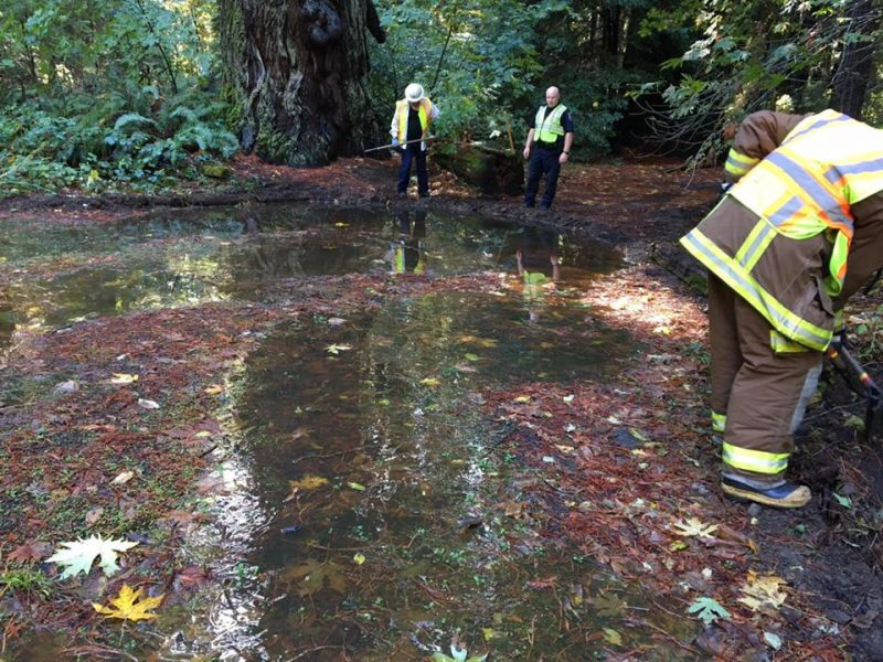 Fuel Spill Chp provided photo