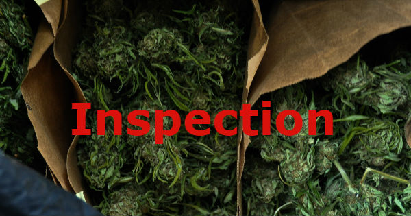 Inspection cannabis inspect