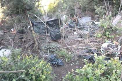 Marijuana mess garden