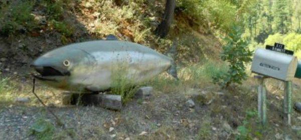 salmon sculpture
