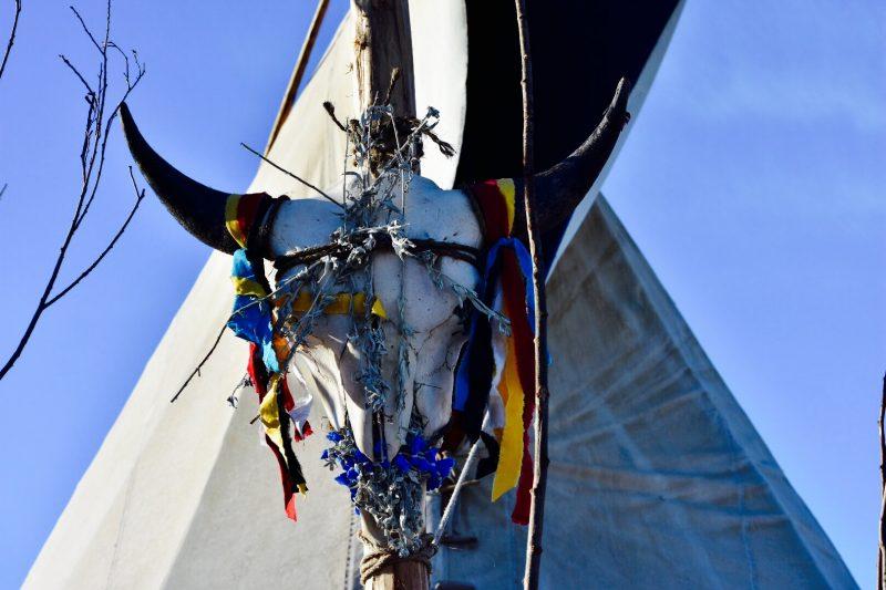 Standing Rock art By Michela Hernandez
