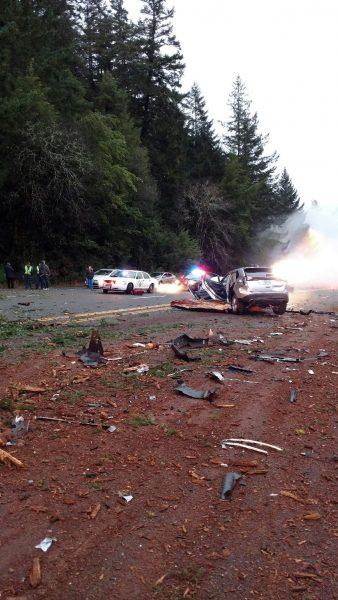 Tree accident road blocked
