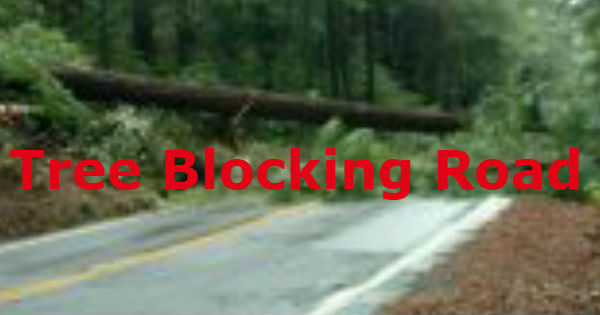 Icon of tree blocking road