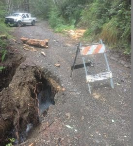 Kings Peak Road culvert slipout
