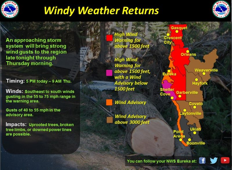 Wind weather graphic