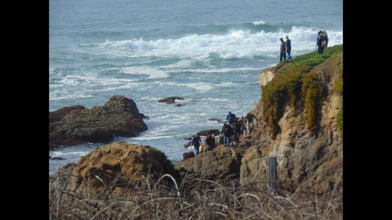 Crowd of rescuers at the ocean