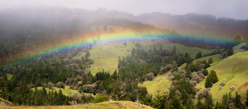 Rainbow in the Humboldt Hills
