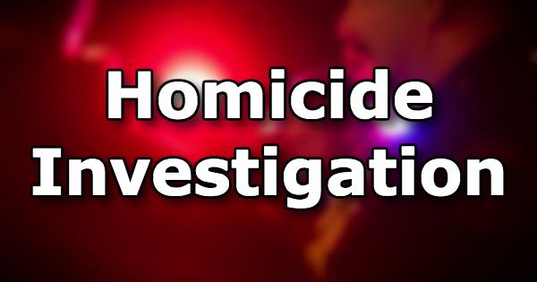 Homicide Investigation