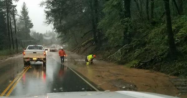 Redwood Drive