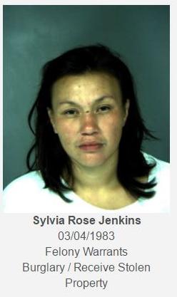 Sylvia Jenkins mugshot