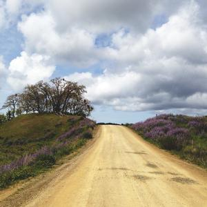 Bald Hills Road