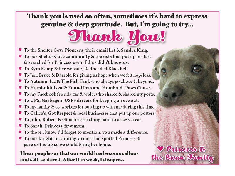 Thank you card from owner who found lost dog