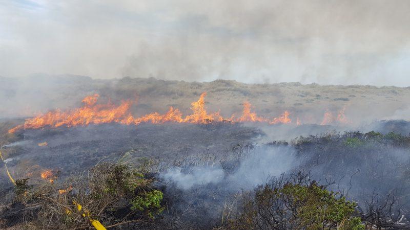 large wildland fire