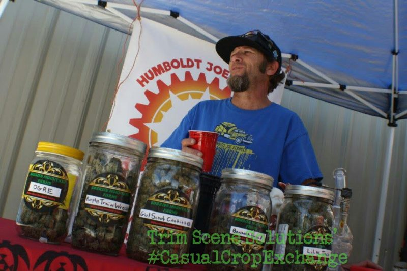 Cannabis vendor