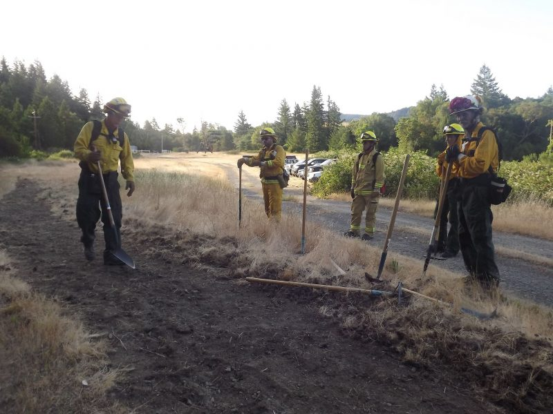 Cutting a fire line training