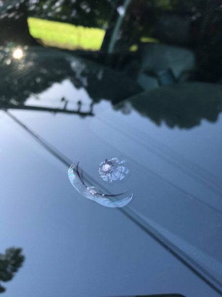 Pellet shot to car window