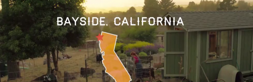 Sceengrab of Bayside California WWOOF farm video