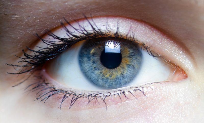 The Host Eyes
