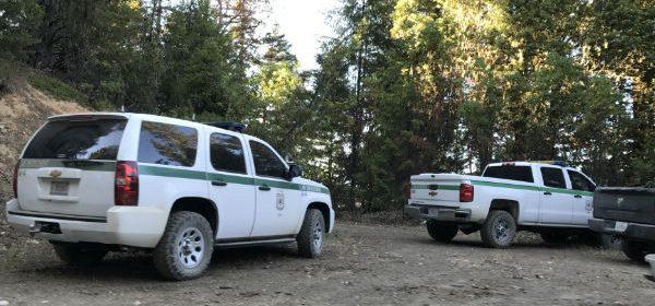 Marijuana Raid in a National Forest