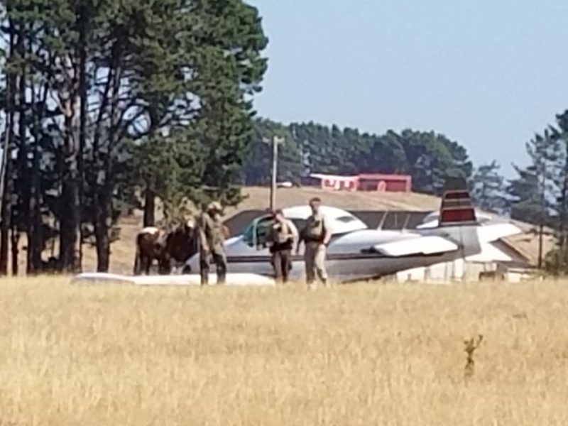 Horses and emergency personnel surround a downed plane.