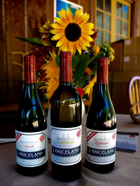 Briceland Wine sunflower
