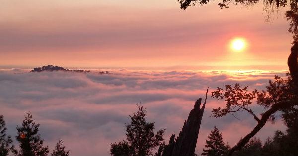 Sunrise in Salmon Creek