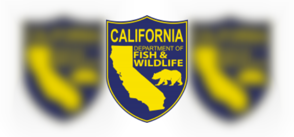 California Department of Fish and Wildlife (CDFW)