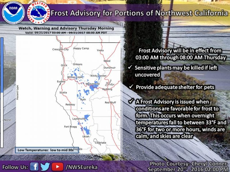 frost graphic from the NWS