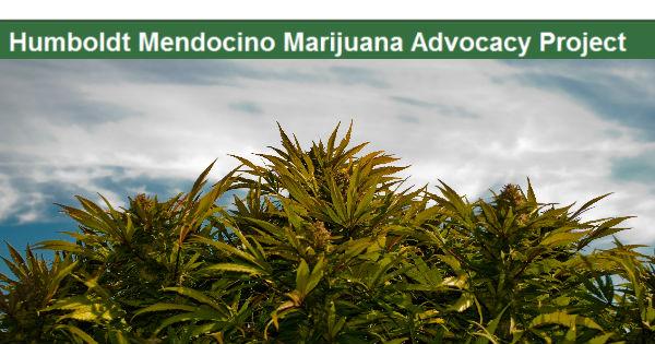 Hummap Humboldt Mendocino Marijuana Advocacy Project
