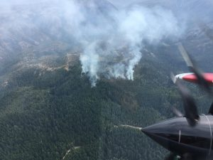 A 40 acre fire started near Gasquet today.