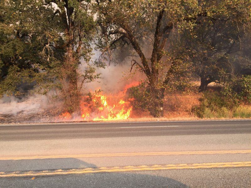 Fire bloomed along Hwy 101 late this afternoon. [