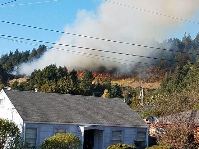 Fire in BLue lake