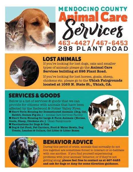 County resources for animals affectedd by the disaster